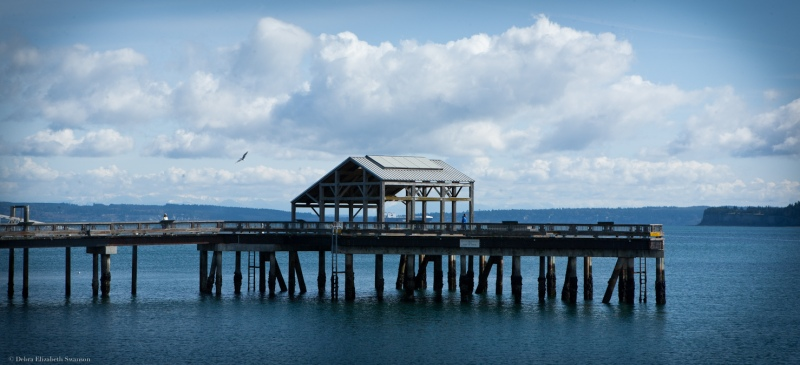 Photography, Debra Elizabeth, Port Townsend